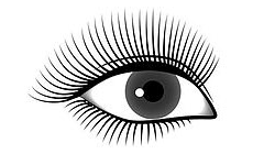 Gorgeous Lash Style East Los Angeles, California