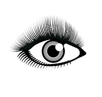 Cute Lash Style Royal Oak, Michigan